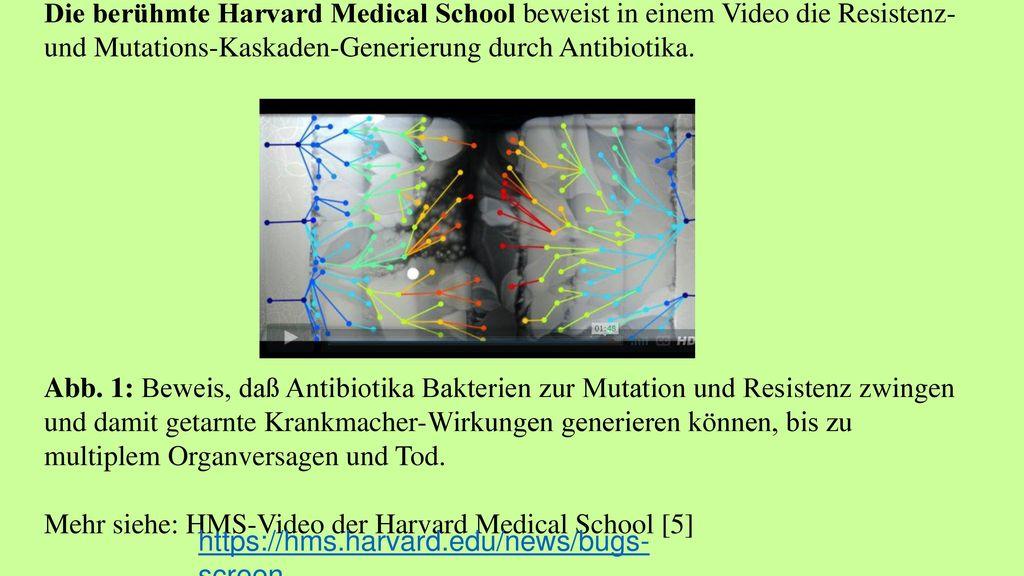 Die berühmte Harvard Medical School beweist in einem Video die Resistenz- und Mutations-Kaskaden-Generierung durch Antibiotika. Abb. 1: Beweis, daß Antibiotika Bakterien zur Mutation und Resistenz zwingen und damit getarnte Krankmacher-Wirkungen generieren können, bis zu multiplem Organversagen und Tod. Mehr siehe: HMS-Video der Harvard Medical School [5]